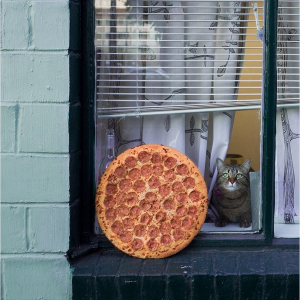 Pizzas — They're Just Like Us!