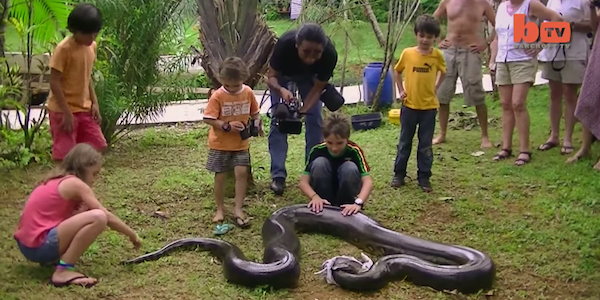 YOLO: Math Teacher Catches 17-Foot Anaconda With His Bare Hands (Video)