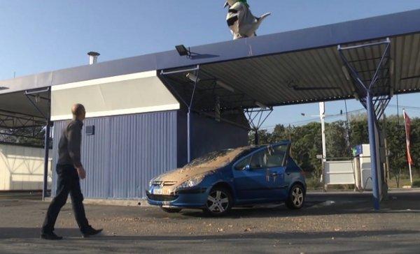 Rémi Gaillard's Pigeon Poop Prank at the Car Wash (Video)