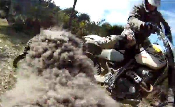 GoPro-Fitted Ram Attacks Biker (Video)