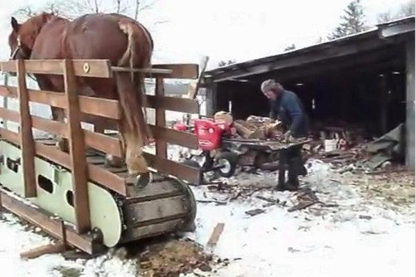 Horse Powered Treadmill Log Splitter (Video)