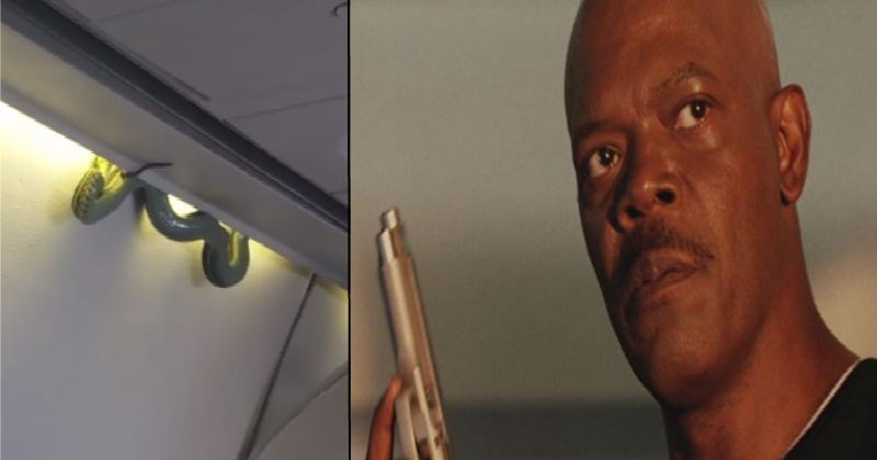 Oh Hell No, There Was a Real Mother F**kin' Snake on a Real Mother F**kin' Plane?!