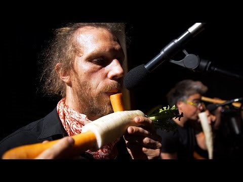 This Orchestra Literally Plays With Their Food