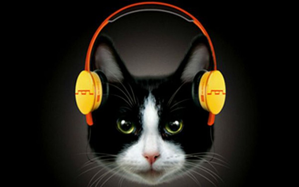 Headphones for Cats? They Cost $1,000