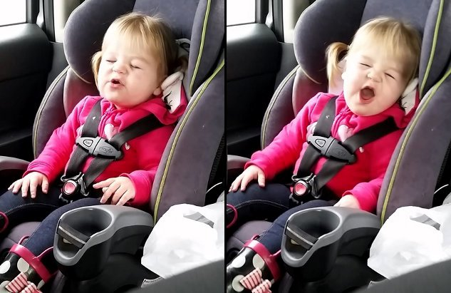 Little Girl Lip-Syncing to Shake It Off by Taylor Swift (Video)
