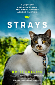 Strays is a New Book About a Lost Cat, Homeless Man And Their Journey Across America